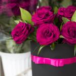 significado de las rosas de burdeos